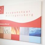 Acupunctuur Hillegersberg-9